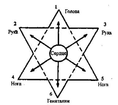 шесть областей представляют самые отдаленные части тела с энергетической точки зрения