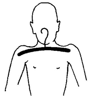 Поднятые плечи — выражение страха. Можно доказать это, приняв выражение страха. Обратите внимание, что плечи поднимаются вверх автоматически и, по мере того как грудная клетка раздувается, ощущается нехватка воздуха. Когда реакцией является любовь, плечи обычно опускаются. Привычно поднятые плечи показывают, что человек сохраняет позу страха, от которого он не может отделаться, потому что не осознает своей напуганности. Вообще ситуация, явившаяся причиной страха, уже забыта, а сами эмоции подавлены. Такие привычные позы не появляются из единичного опыта, а означают длительную незащищенность от ситуации страха. Например, это могут быть переживания мальчика, который долго боялся своего отца.