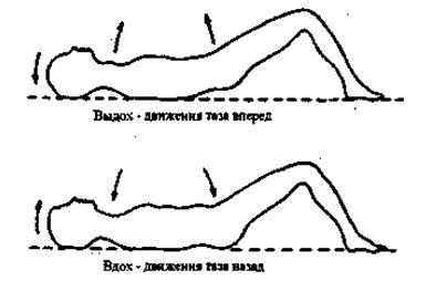 Когда дыхание спокойное и глубокое, мышечное напряжение не блокирует дыхательные волны, когда они проходят по телу, таз будет двигаться спонтанно с каждым вздохом. Он будет подниматься вверх на выдохе и падать вниз на вдохе.