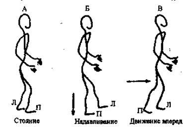 Перенесите массу тела на свод стопы. Перенесите массу на правую ногу, поднимите левую ногу и дайте ей качнуться вперед. Когда освободите правую пятку, ступите вперед на левую ногу
