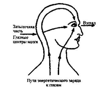Первый путь — вдоль поверхности тела, от сердца через горло и лицо в глаза. С этим потоком связано чувство сильного желания контакта, выражение через глаза чувства и ощущения. Второй путь -вдоль спины вверх через макушку головы ко лбу и глазам. Этот поток придает взгляду агрессивный компонент, и третий в основании мозга, который соединяет визуальные центры прямо с сетчаткой глаза.