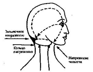 Этот энергетический отток вызывает типичное выражение страха. Если отток агрессивного компонента идет назад по своему пути, то брови поднимаются и глаза широко открываются. Если страх силен, то человек почувствует, что «волосы у него встали дыбом» и задняя сторона шеи напряжена. При оттоке мягкого компонента отвисает нижняя челюсть и широко открывается рот. Если переживание кратковременное, то энергия возвращается назад к глазам и черты лица расслабляются.