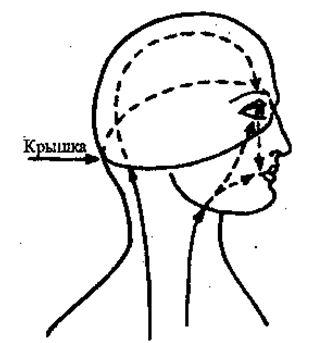 Этот поток несет агрессивный компонент всех чувств. Это необходимо при таких действиях как взгляд и разговор. Если мы прикроем нашу агрессивность колпаком (крышкой), то под крышкой обязательно накопится давление, создающее головную боль.