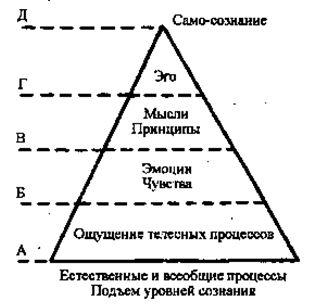 уровни сознания как смежные, имеющие общую границу с иерархией личностных функций